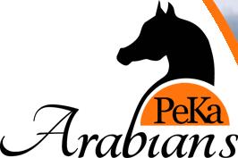 Logo PeKa Arabians